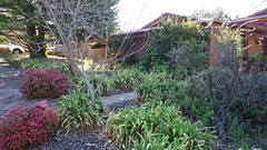 South end of home & garden (spelio) Tags: mal mj home old house sep 2018 belconnen act canberra australia