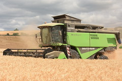 Deutz Fahr 6090 HTS Combine Harvester cutting Winter Barley (Shane Casey CK25) Tags: deutz fahr 6090 hts combine harvester cutting winter barley conna samedeutzfahr deutzfahr sdf df green grain harvest grain2018 grain18 harvest2018 harvest18 corn2018 corn crop tillage crops cereal cereals golden straw dust chaff county cork ireland irish farm farmer farming agri agriculture contractor field ground soil earth work working horse power horsepower hp pull pulling cut knife blade blades machine machinery collect collecting mähdrescher cosechadora moissonneusebatteuse kombajny zbożowe kombajn maaidorser mietitrebbia nikon d7200