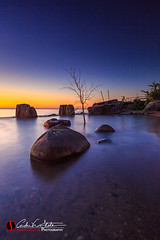 Michigan Cove (andrewslaterphoto) Tags: andrewslaterphotography boathouse greatlakes lakemichigan milwaukee rocks sunrise tree silhouette abandoned cove outdoors water mke mkemycity morning nature canon 5dmarkiii