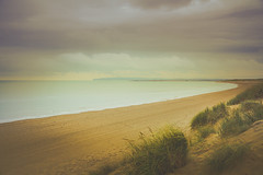 nobody on the beach (gian_tg1) Tags: cambersands sanddune light landscape seascape marramgrass eastsussex zeiss1670mmf4 cloudy sea sand sky moody deserted beach tranquility emptybeach