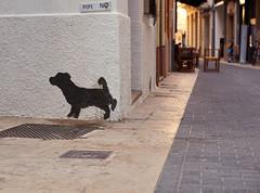 The side street. (GlebLv) Tags: sony a6000 sel50f18 spain espana castellón vinaros vinaroz summertime evening sunshine graffiti street backstreet sidestreet cityscape