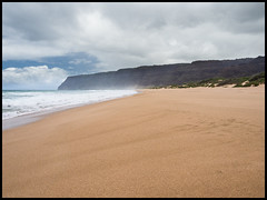 P8220270 (Jean-David & Anne-Laure) Tags: beach canyon gorge hawaii kauai landscape mountain nature outdoor pacific park rain reserve sea statepark usa waimea