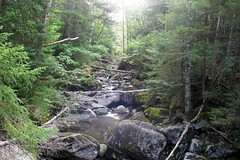 Mt. Marcy Hike 1809074214w (gparet) Tags: hike hiking trail trails woods forest nature outdoor outdoors scenic vista naturephotography adk adirondacks adirondacksstatepark mtmarcy mountmarcy marcy water brook stream watercourse