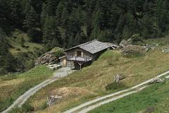 Cordonna (bulbocode909) Tags: valais suisse valdentremont vallondevalsorey cordonna chalets alpages montagnes nature chemins forêts arbres vert