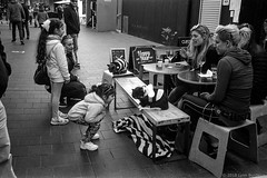 meeting the blind rescue cats  #421 (lynnb's snaps) Tags: 201808 35mm cv21mmf4ltm ilfordfp4 leicaiiic manly xtol bw blackandwhite cafe cats children film fp4 street manlyvillage sydney australia 2018 cute bianconegro blackwhite bianconero biancoenero blancoynegro noiretblanc monochrome ishootfilm leicafilmphotography cv35mmf25colorskoparltm rangefinderphotography barnack