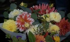Floral Bouquet (Scott 97006) Tags: flowers bouquet pretty beauty colorful petals variety