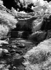 P1010957 (xxtreme942) Tags: malaysia cameronhighland waterfall ir infrared outdoor nature landscape bw blackandwhite panasonic gf2