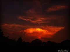 Ohio Sunday Night Sunset! (Edale614) Tags: sunset sunsetsaroundtheworld aroundtheworld wanderlust sky dusk naturephotography naturelovers nature photography photo photooftheday picoftheday pic columbus ohio ohiophoto exploreohio explore earl614