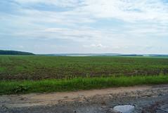 *** (PavelChistyakov) Tags: ukraine ua trip khmelnytskyi region oblast nature landscape field sky village countryside sony alpha sonyalpha dslr digital raw rpp lightroom
