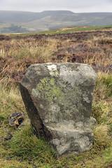 Wet Withens (l4ts) Tags: landscape derbyshire peakdistrict darkpeak eyammoor wetwithens embankedstonecircle stonecircle heather moorland chairstone higgertor