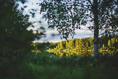 Midsummer18-6 (junestarrr) Tags: summer finland lapland lappi visitlapland visitfinland finnishsummer midsummer yötönyö nightlessnight kemijoki river