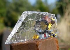 Shardy Figure (1/3) (captain_joe) Tags: macromondays glass glas scherbe shard toy spielzeug 365toyproject lego minifigure minifig acebrickman