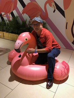 George Neary loves flamingos!