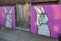 Hello, Is It Me You're Looking For ? (HiJinKs Media...) Tags: upfest2018 upfest uk graffiti bristol art paint fence wall color colour rabbits hares tiles roof pavement path step