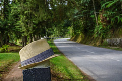 Straw hat with mountain road (phuong.sg@gmail.com) Tags: accessory aged apparel backdrop background bonnet clothing country dude equipment farm farmer foliage forest garden grass green greenery landscape leisure meadow object old outdoor paisley private rack ranch recreation rodeo rugged sport texture trees vintage weathered wicker wild wood worn