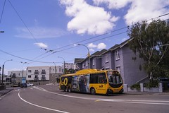 Brooklyn Road (andrewsurgenor) Tags: transit transport publictransport nzbus gowellington electric trackless trolleybus trolleybuses wellington nz streetscenes bus buses omnibus yellow obus busse citytransport city urban newzealand