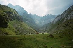 Meglisalp 2 (maxlabor) Tags: 35mmfilm alpen alpine alps alpstein appenzell appenzellinnerrhoden easternswitzerland iso800 kodak kodakfilm meglisalp ostschweiz portra800 schweiz schwende schwendetal seealpsee suisse svizzera switzerland weissbad yashicat4super analogphotography analoguephotography film negativefilm wandern wanderung