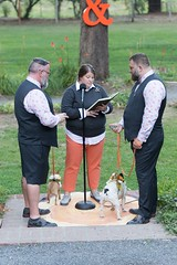 Our Wedding - The Ceremony (seajeph) Tags: jknojoke jeffkevin jeff kevin