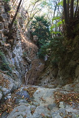 La Forra del Ponte (Roveclimb) Tags: mountain montagna alps alpi prealpi escursionsmo hiking laglio poncionedilaglio colmegnone germanello forest foresta wood albero bosco canyon forra valledelponte montidinar montiditicè montiditicee
