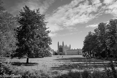Cambridge   -2.jpg (Colin Dorey) Tags: chapel kingscollege bw monochrome blackandwhite blackwhite cambridge university colleges architecture cambridgeshire structure building tree sky backs thebacks