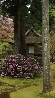 Sanzenin ,Kyoto Ohara