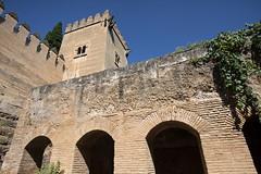 Tapia Generalife_03JMG_9186 (Delegación del Gobierno de la Junta de Andalucía) Tags: winner alt alhambra juntadeandalucia tapia generalife