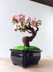 IMAG5911~2 (Mingle Doll 鳴娃娃) Tags: crochet crochetcherryblossom crochetcherryblossombonsai crochetbonsai crochetbonsaitree crochetamigurumi amigurumi crochetaddict crochetart crochetflower crochettree redheartyarn dmcthreads 鉤織 櫻花 盆栽 アミグルミ 编みぐるみ mingledoll