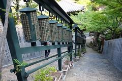 Hiroshima (hummelnote) Tags: hiroshima miyakima