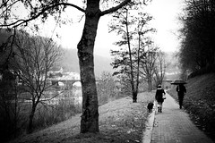 A rainy sunday afternoon walk (Black&Light Streetphotographie) Tags: mono monochrome menschen menschenbilder leute people personen portrait peoples portraits urban nahaufnahme nature natur noir tiefenschärfe wow dof depthoffield fullframe face friends freunde city sony streetshots streets schwarzweis streetshooting streetportrait street sw streetphotographie sonya7ii vollformat blackandwhite blackwhite bw bokeh bokehlicious blur