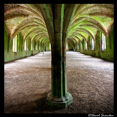 Cellarium (Dave Snowdon (Wipeout Dave)) Tags: fountainsabbey nationaltrust unescoworldheritagesite unesco davidsnowdonphotography canoneos80d building history northyorkshire ripon heritage architecture arch