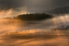 Through the Fire (Bonnie And Clyde Creative Images) Tags: landscapes poland europe mountains autumn mist sunrise canon