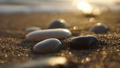 Sous le soleil exactement (Ôdonata) Tags: galets plage couchant mer bokeh russian vintage manual