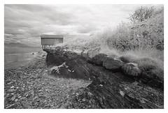 Austbø (2018) (phamnes) Tags: austbø norway xtol blackandwhitefilm r72filter epsonv600 superpan200 superpan rolleisuperpan infraredfilm infrared sigma20mm nikonf301 nikon