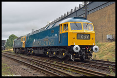 No D1705 Sparrowhawk 9th Sept 2018 Great Central Railway Diesel Gala (Ian Sharman 1963) Tags: no d1705 sparrowhawk 9th sept 2018 great central railway diesel gala 47117 class 47 duff station engine rail railways train trains loco locomotive passenger heritage line gcr leicester north rothley brook swithland quorn woodhouse