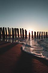Fin de journée (Geoffroy Hauwen) Tags: canon europe france wissant cotedopale coast west sable mer sea seascape seaside sky soleil summer ciel westcoast