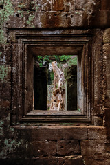 Preah Khan – Window (Thomas Mülchi) Tags: preahkhan angkor siemreap cambodia 2018 siemreapprovince door window tree forest jungle krongsiemreap kh