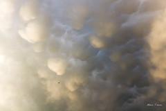 Vol en dessous d'un nid de mammatus (MarKus Fotos) Tags: chablais canon clouds cloud gavot france orage hautesavoie été storm sturm