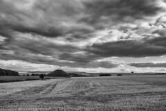 Silbury Hill (thulobaba) Tags: monochrome blackandwhite fuji xt1 silbury hill mound landscape sky clouds