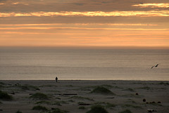 Seaside walk (DoctorMP) Tags: lofoten norway nordland moskenesoya bunes beach ocean atlantic sea summer outdoors evening sunset