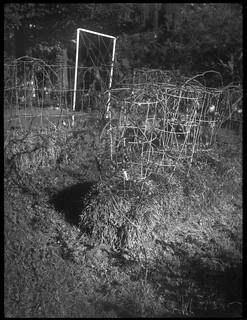 front lawn garden, tomato cages, hay bales, Blue Ridge Avenue, West Asheville, NC, Zenobia, Neo-Hesper 75mm f/3.5, Arista.Edu 200, Kodak TMAX develper, 9.18.18