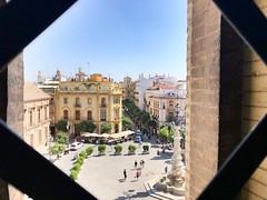 Sevilla (yanitzatorres) Tags: fenced rejas urban urbano ciudad city sky cielo window ventana verano summer vacations vacaciones giralda lagiralda square plaza andalucía españa spain sevilla
