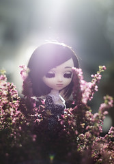 Heather (Sokeriritari) Tags: pullip custom pullipdoll doll fulcustom pullipfullcustom customdoll wig obitsu fall autumn