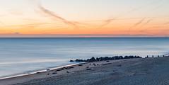 Sealscape (himbammargera) Tags: seal england horsey landscape nikon nikond700 nikon5014d dawn sunrise sea longexpo nature norfolk morning