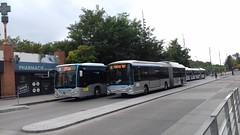 (Ceobus) Stivo Mercedes Citaro C2 ES-496-QR (95) n°134 & Heuliez GX 437 Hyb ES-653-VD (95) n°795 (couvrat.sylvain) Tags: ceobus stivo mercedesbenz mercedes citaro c2 o 530 o530 bus autobus cergy heuliezbus heuliez gx 437 gx437 hybride articulé