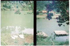 000056 (jovenjames) Tags: 2017 vietnam yashica electro 35 gx kodak vision3 500t diptych olympus pen ees2 light leaks analog film snapshots dalat