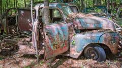 Old Car City 166 (augphoto) Tags: augphotoimagery abandoned decay old texture truck vehicle weathered white georgia unitedstates