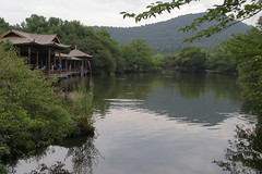 杭州西湖-花港觀魚 (沐均青) Tags: china landscape scenery travel tree colorful green 杭州 water lake river summer reflection nature park rock bridge buildings