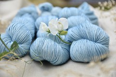 Eden Cottage Yarns Titus 4ply (Victoria Magnus) Tags: yarn wool edencottageyarns handdyed merino knitting crochet