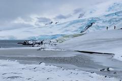 Isla Trinidad - Antártida (robertopastor) Tags: antarctica antarctique antarktika antartic antártida caletacierva fuji robertopastor xt1 xf1655mm aq