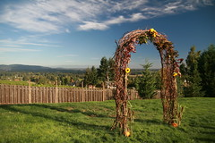IMG_6449 (willsonworld) Tags: jose dan melanie david dianne wedding dundee oregon or gibbs 2014